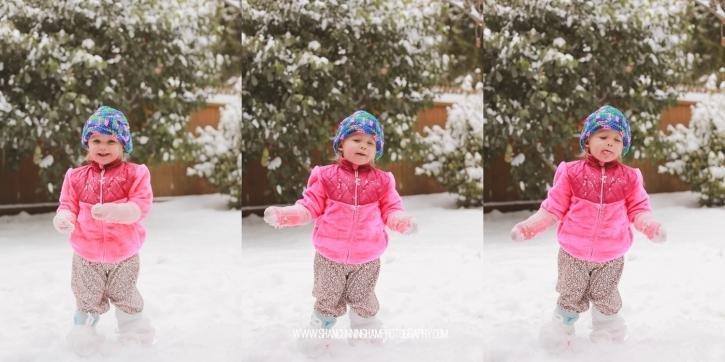 snowblog-2
